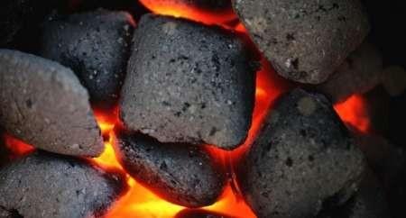فولاد و زغالسنگ از زمینه های مساعد همکاری ایران، آلمان و اتریش است