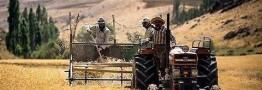 یک تیر و دو نشان دولت با ورود محصولات کشاورزی به بورس کالا