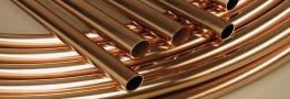 ثبات شکننده فلز سرخ