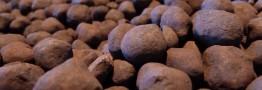 افزایش تولید گندله سنگ آهن ایران